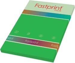 KOPIEERPAPIER FASTPRINT-100 A4 120GR GRASGROEN 100 Vel