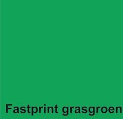 KOPIEERPAPIER FASTPRINT-100 A4 120GR GRASGROEN 100