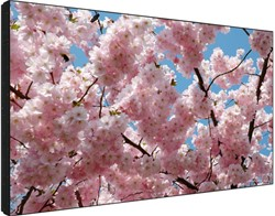 VIDEO WALL 60 INCH 700CD/M2 2X2 LANDSCAPE VLOERSTANDAARD